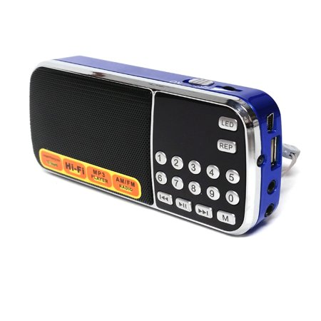 Reiko Portable USB Fm Radio Speaker Music Player With LED Flashlight, Small And Compact In Blue   (Best Small Speakers For Music)