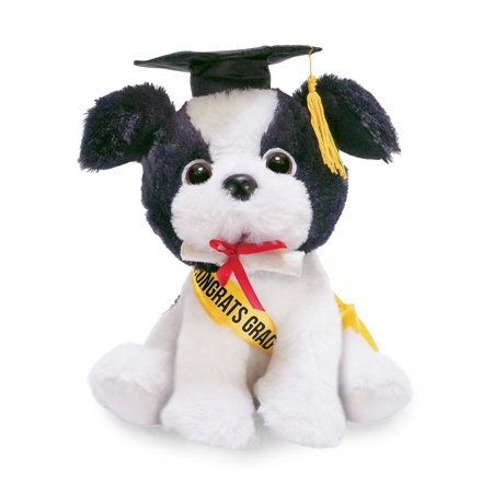 Congrats Grad Animated Musical Graduation Plush Dog