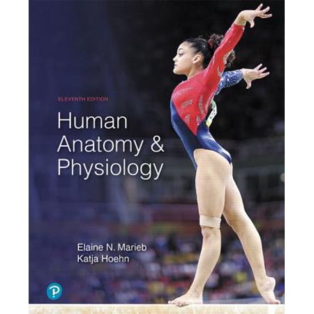 Human Anatomy & Physiology (Anatomy And Physiology Coloring Workbook Elaine Marieb Answers)