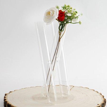 Efavormart 3 Clear Glass Conjoined Test Tube Flower Vase Plant Decoration - SET of 2](Glass Flower Vases)