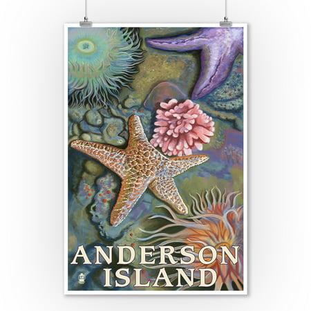 Anderson Island, WA Tidepools - Lantern Press Poster (9x12 Art Print, Wall Decor Travel Poster)