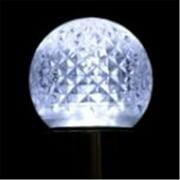 Queens of Christmas G40-RETRO-CW-E12 G40-RETRO-CW-E12 G40 Non-dimmable Cool White Commercial  Retrofit bulb with an E12
