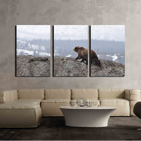 wall26 - 3 Piece Canvas Wall Art - Wild Bear with Two Babies in the Mountain - Modern Home Decor Stretched and Framed Ready to Hang - 16