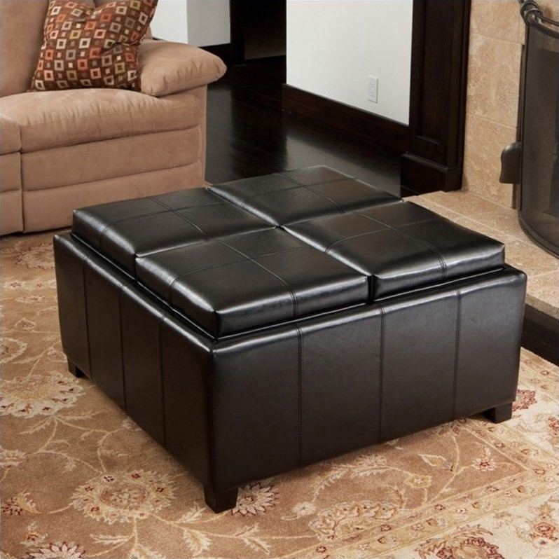 Trent Home Ranger Four Sectioned Storage Ottoman in Black
