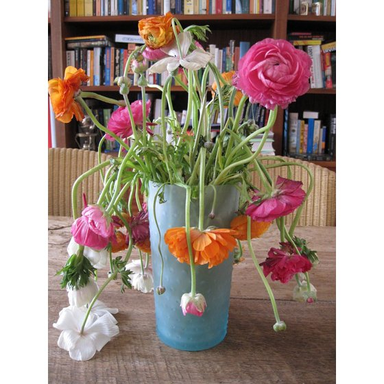 Laminated Poster Flower Flowers Vase Perish Art Slap Poster Print 24 ...