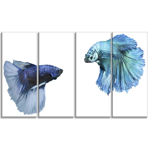 Design Art Fighting Fish Digital Animal 4 Piece Graphic Art on Wrapped Canvas Set