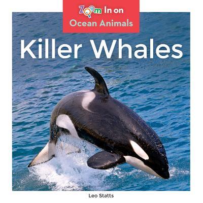 Killer Whales - Killer Whale Size Chart