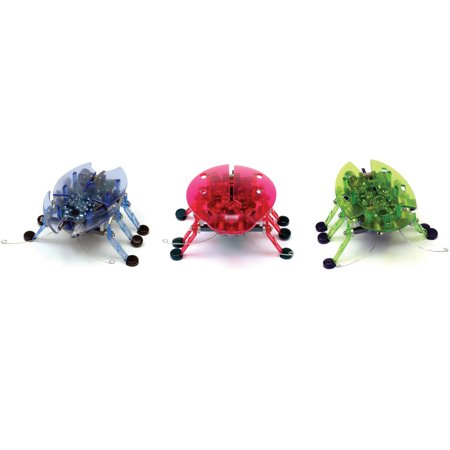 Hexbug Beetle  Colors May Vary