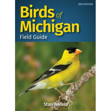 Bird Identification Guides: Birds of Michigan Field Guide (Edition 3) (Paperback)