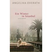 Ein Winter in Istanbul - eBook