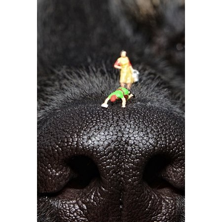 Framed Art for Your Wall Close Dog's Nose Tiny People Clean Nose Dog Nose 10x13
