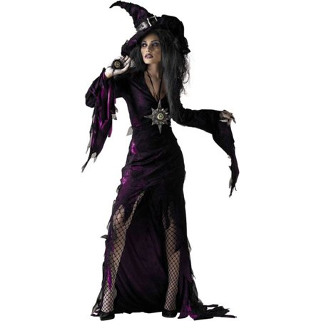 Morris Costumes Adult Womens Witch & Sorceress Tattered Costume 12-14, Style DG4805](Tattered Witch Costume)