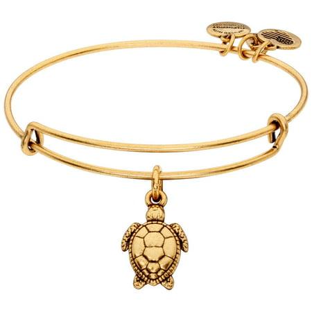 Alex And Ani Sea Turtle Gold One Size Bracelet A17INTSEARG Cc Skye Gold Buckle Bracelet