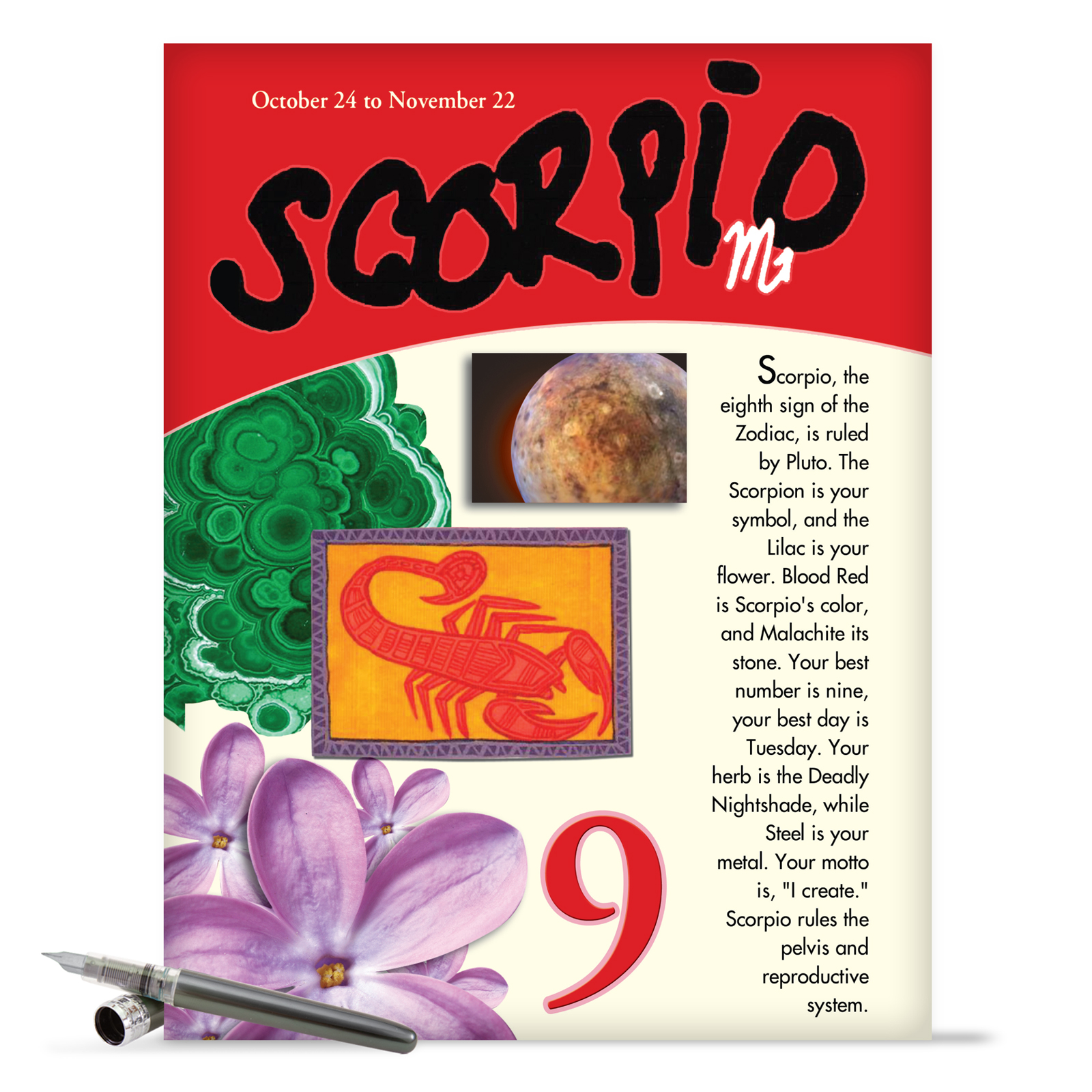 "J9449 Jumbo Hilarious Birthday Greeting Card: 'Scorpio' with Envelope (Jumbo Size: 8.5"" x 11"")"