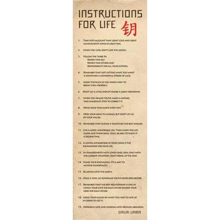 Instructions For Life Dalai Lama Poster   12X36