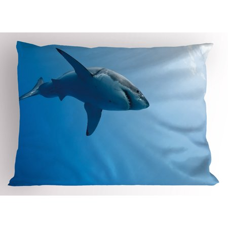 fb6f2b6f64a4 Shark Pillow Sham Fish Swimming in the Ocean Underwater Beauty Tropical  Island Water Nature Landscape