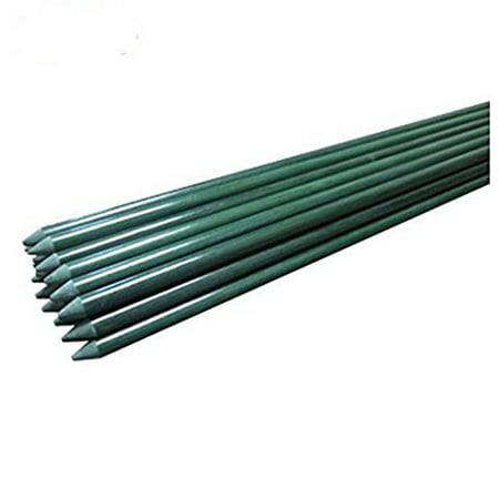 EcoStake Garden Stakes, Plant Stakes, Tomato Stakes , Never Rust/rot, Better Than Wood Stakes and Bamboo Stakes, 1/4'' X 60'', Pack Of 20 (Tomato Stakes Cages)