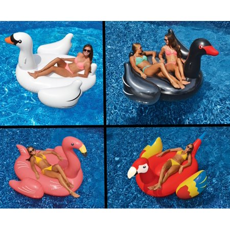 Swimline Swimming Pool Float Lounger Set, White/Black Swans + Flamingo +