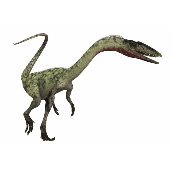 29 Best Corey Reagan Interiors Images On Pinterest: Coelophysis Dinosaur Canvas Art