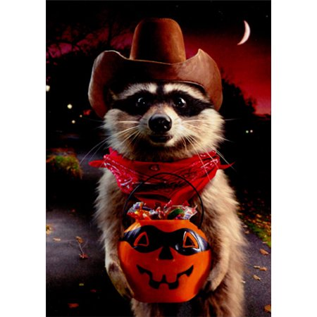 Avanti Press Raccoon Cowboy Trick Or Treating Funny Halloween Card for $<!---->