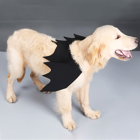 CARLTON Animal Pet Dog Cat Bat Vampire Halloween Fancy Dress Costume Outfit Wings