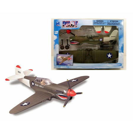 F22 Fighter Jets (NEWRAY 1:48 PILOT MODEL KIT FIGHTER JET P-40)