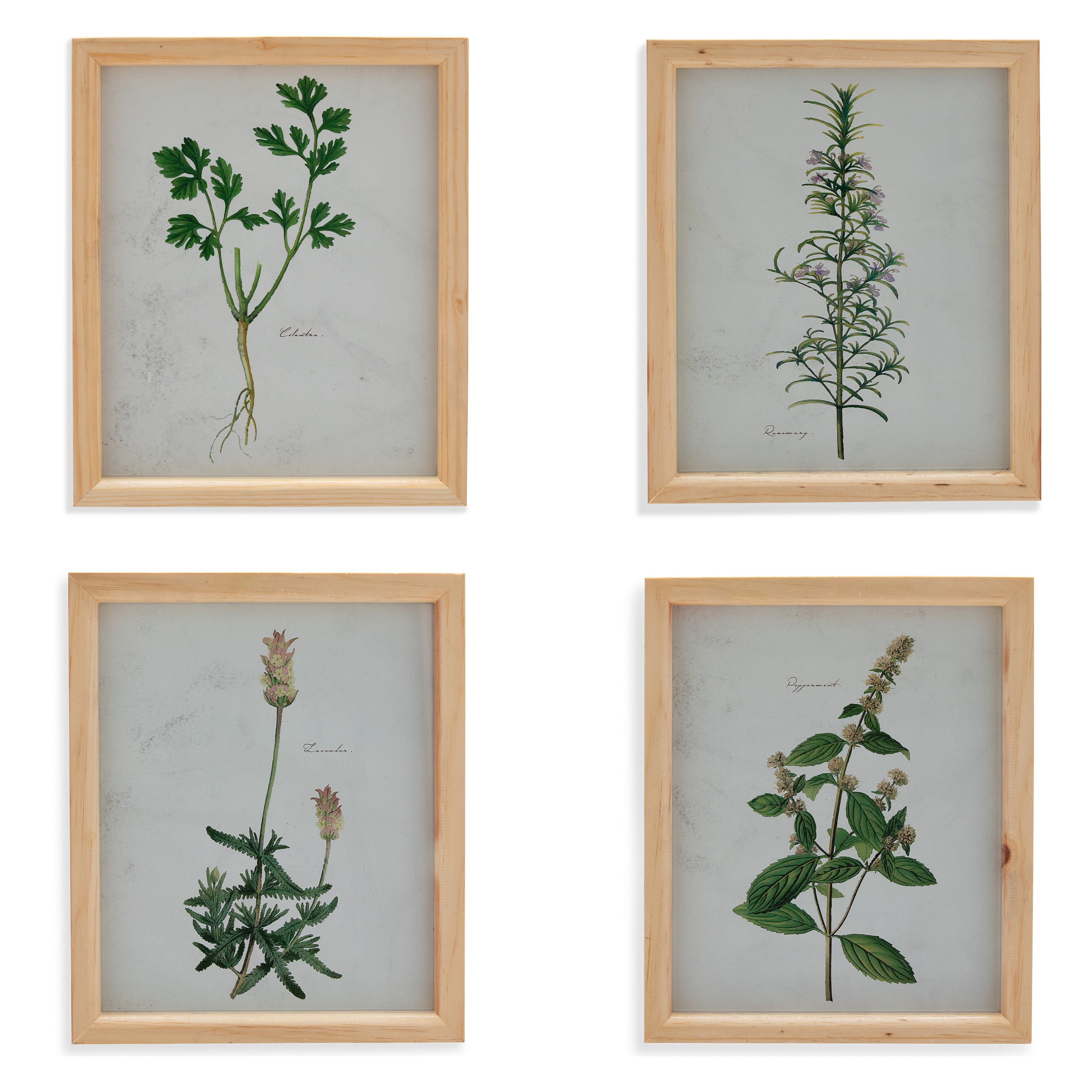 Herbs /& Spices Food Kitchen CANVAS ART PRINT Box Framed Picture Home Decor