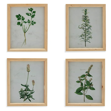 "Herb Wood 10.5""x12.5"" Frame, Set of 4 by Drew Barrymore Flower Home"