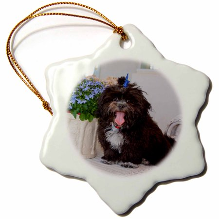 3dRose Shih Tzu puppy sitting by flowers, MR and PR, - Snowflake Ornament, 3-inch