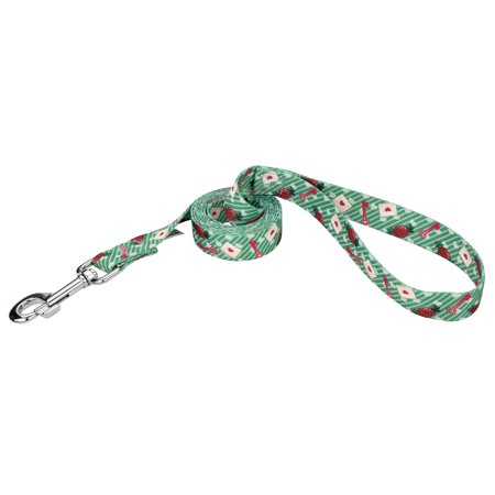 Country Brook Petz 1 Inch Love Letters Dog Leash Limited Edition 4 Foo