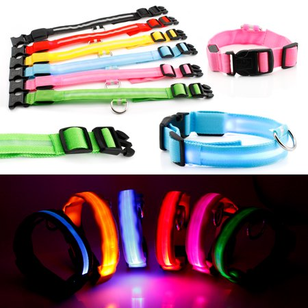 (Small LED Lights COLOR Light Up Pet Dog  Night Safety Waterproof Nylon Neck Adjustable Collar)