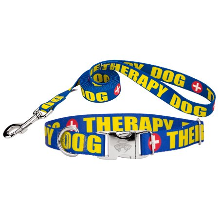 Country Brook Design Therapy Premium Dog Collar Leash