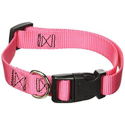 guardian gear nylon adjustable dog collar, fits necks 14 to 20, flamingo pink