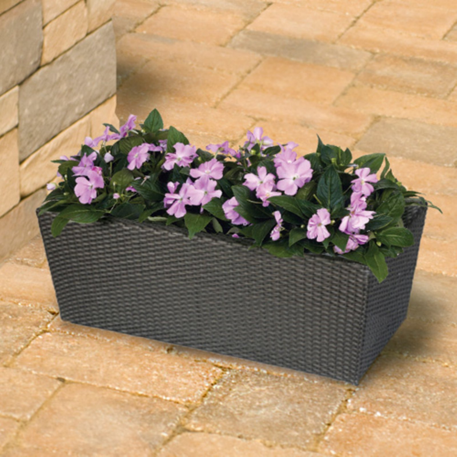 Rectangle Resin Wicker Vista Planter