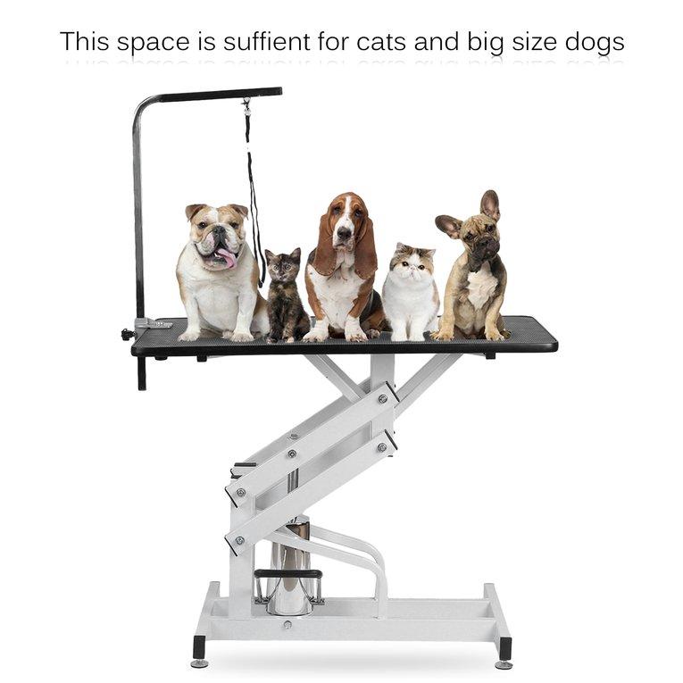 Hydraulic Pet Grooming Table Z-Lift Hydraulic Pet Groomin...