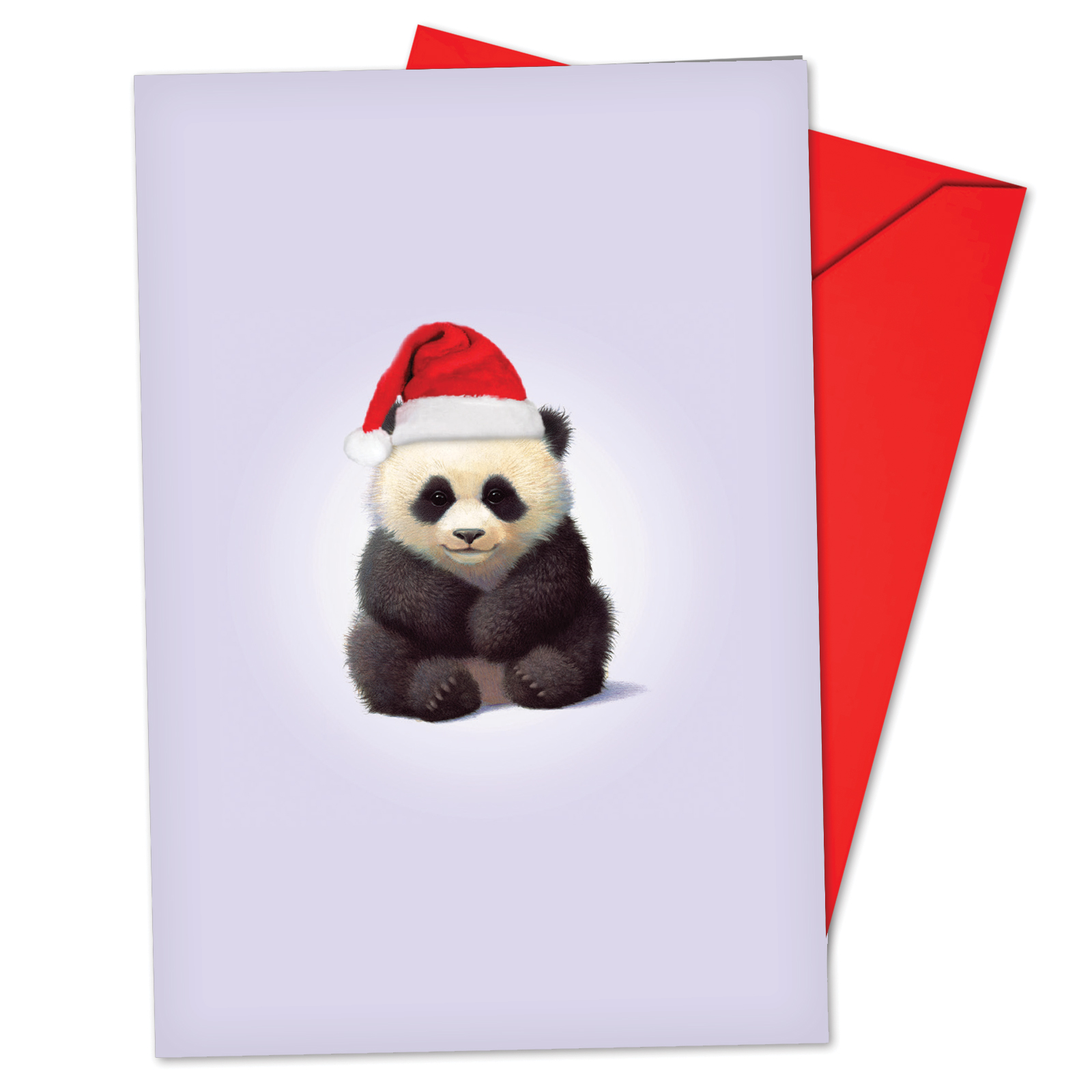 'B6726GXSG Zoo Babies Christmas Cards' Box Set of 12 Funny Merry Christmas Note Cards with Envelopes by NobleWorks