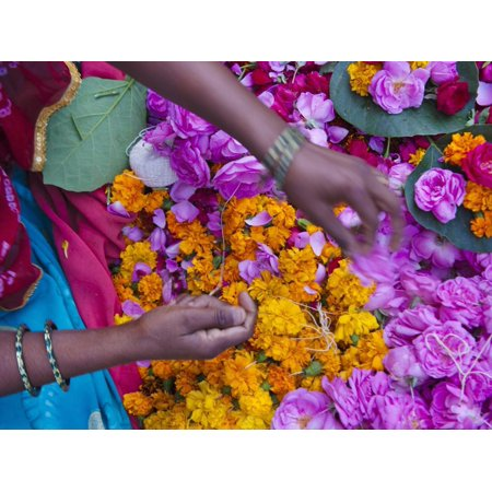 Woman Selling Flower, Pushkar, Rajasthan, India Print Wall Art By Keren