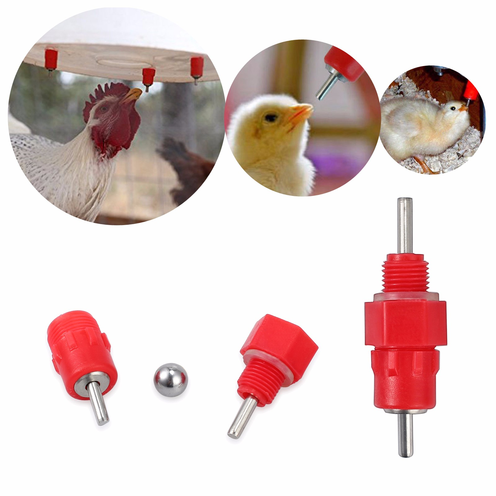 Nipple Drinker Chicken Water Feeder Poultry Duck Hen Screw In Automatic 50 Pack