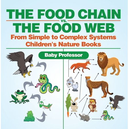 The Food Chain vs. The Food Web - From Simple to Complex Systems | Children's Nature Books -