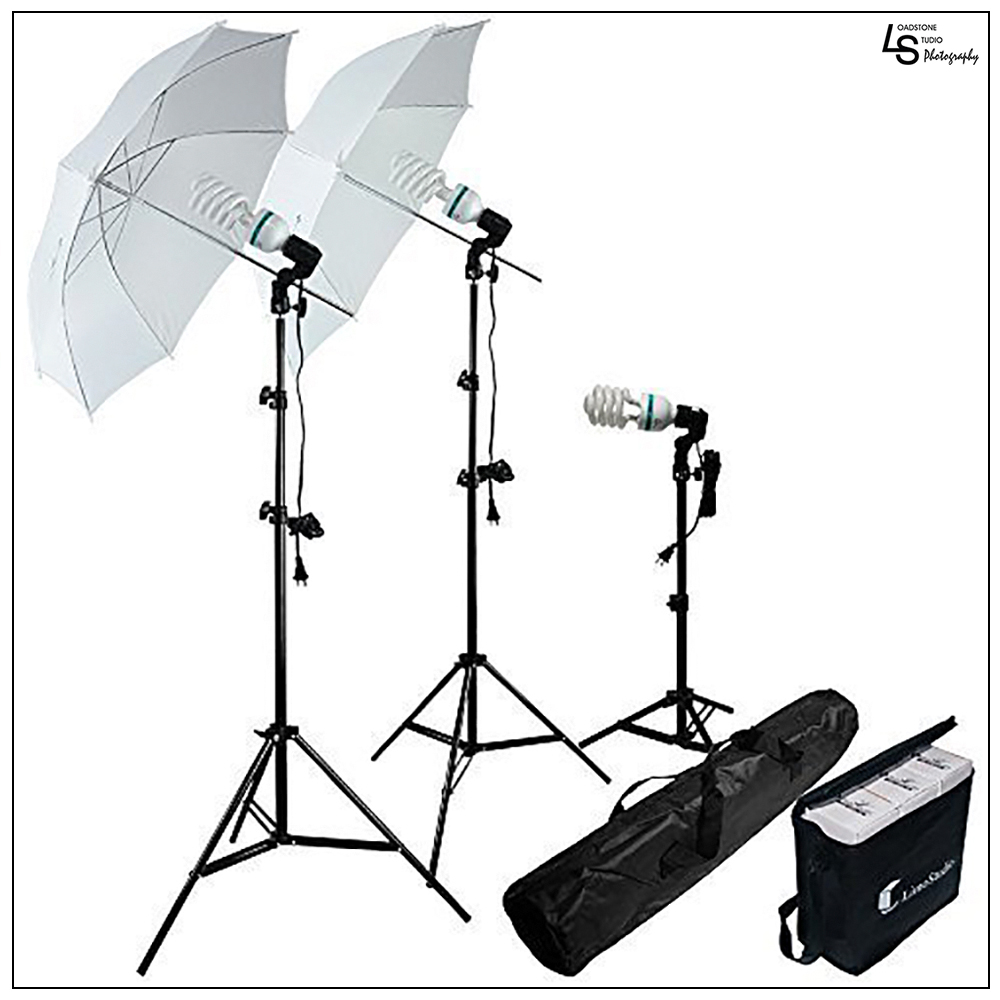 Photo Studio 600W Day Light Umbrella Continuous Lighting Kit by Loadstone Studio, WMLS1401