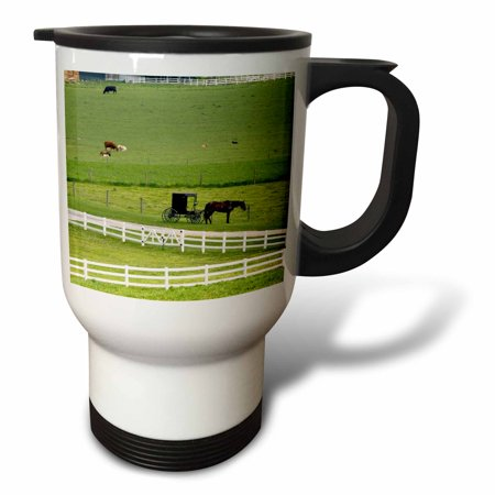 3dRose Amish farm with horse buggy near Berlin, Ohio - US36 DFR0008 - David R. Frazier, Travel Mug, 14oz, Stainless Steel
