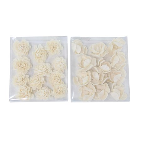 Decmode Boxed Natural White Anemone And Rose Sola Flowers, White - Set of 2 ()