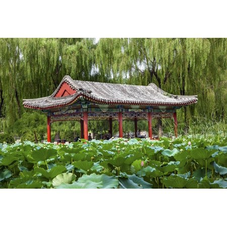 Red Pavilion Lotus Pads Garden Temple of Sun City Park, Beijing, China Willow Green Trees Print Wall Art By William (Apple Tree Home Care Sun City Az)