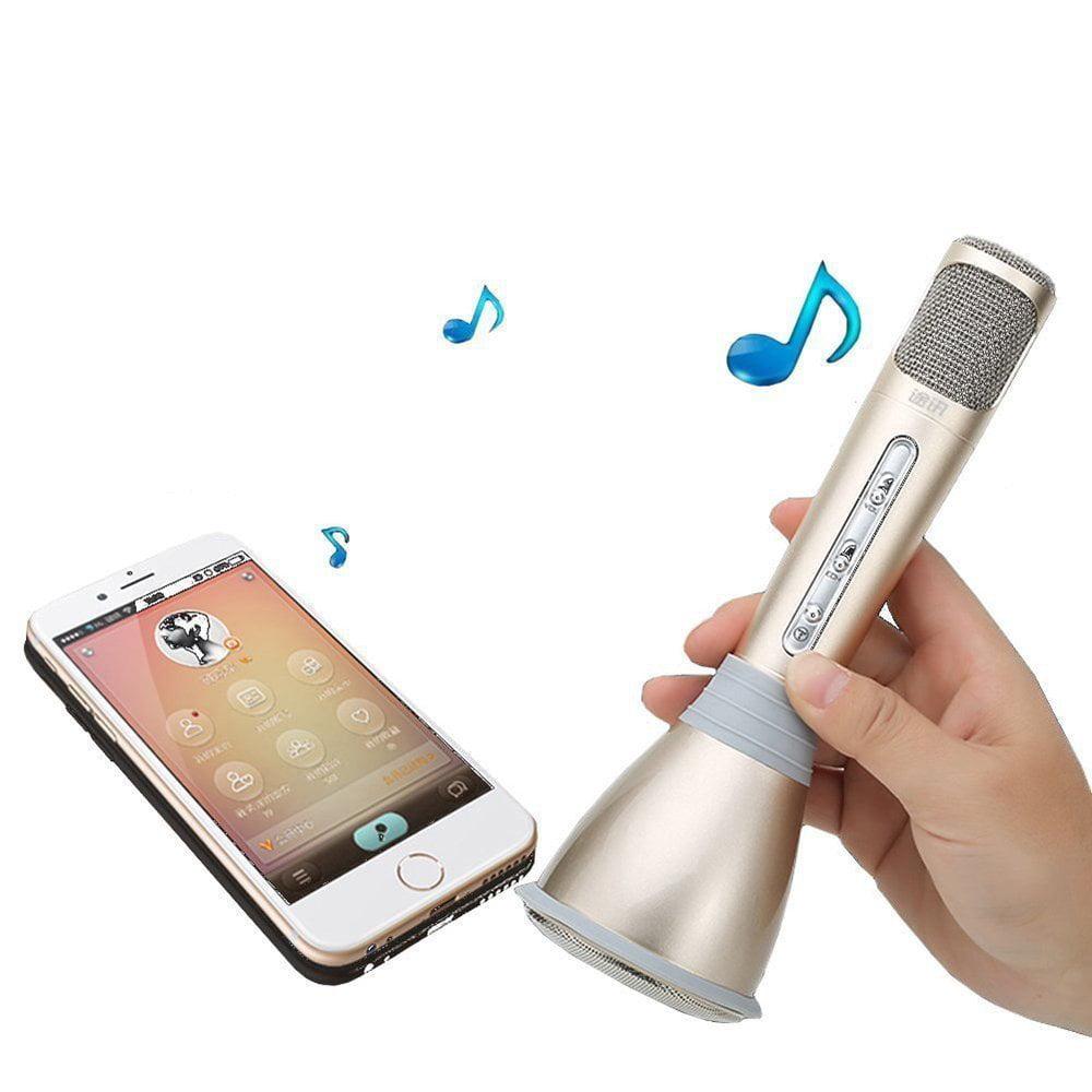 E-SDS Wireless Karaoke Microphone Speaker,Rechargeable & ...