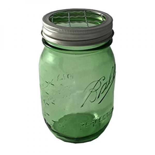 Ball Mason Jar with Flower Frog Lid Insert Regular Mouth ...