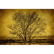 Marmont Hill Entwined Trees Malek Painting Print On Canvas