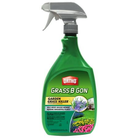 Ortho Grass B Gon Garden Grass - Ortho Glass