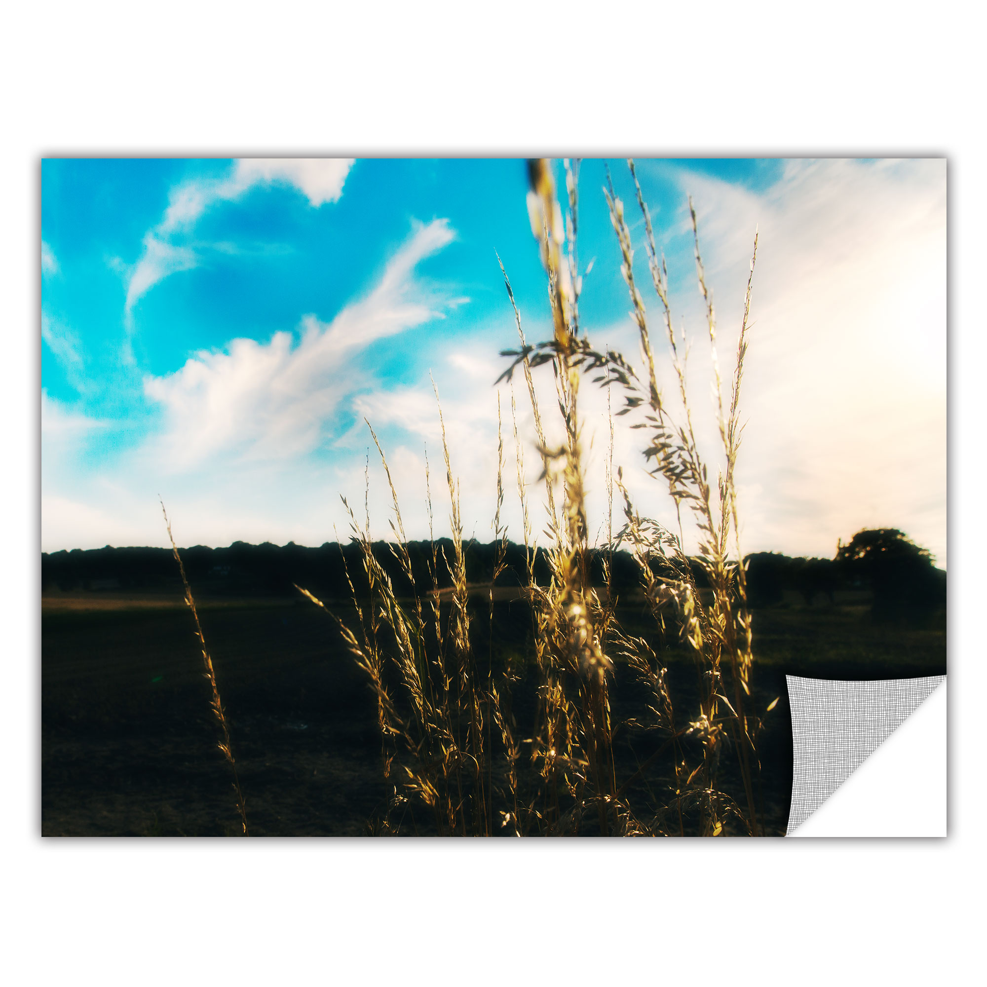 ArtWall Field by Revolver Ocelot Photographic Print