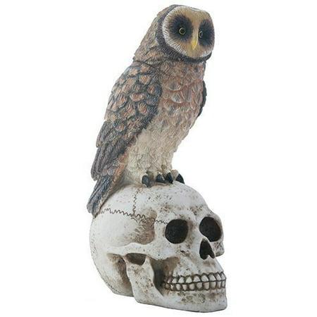Big Brown Owl on Skeleton Skull Halloween Decorative Statue Figurine