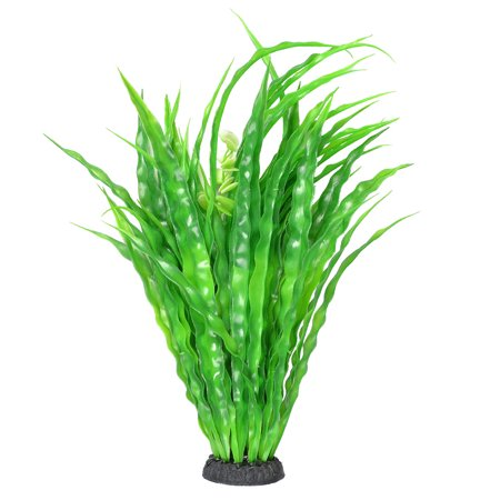 Green Slender Leaves 15.7